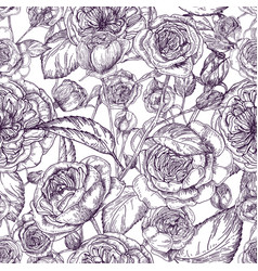 Beautiful detailed pion-shaped rose seamless vector