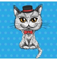 Closeup portrait of the british cat hipster vector