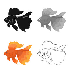 Gold fish icon cartoon singe aquarium fish icon vector