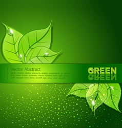 green background with leaves and drops of dew vector image