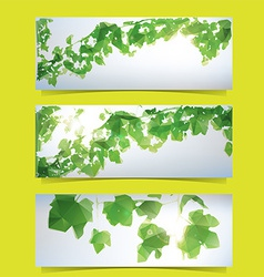 Foliage banner set vector