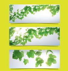 Foliage banner set vector