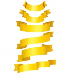 38gold ribbons vector image