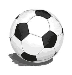 soccer-ball vector image