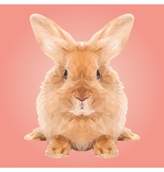 Abstract low poly rabbit design vector