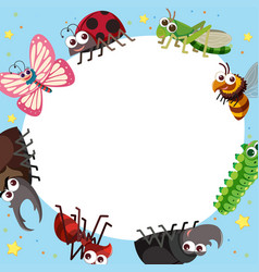 border template with different types of bugs vector image