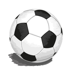 soccer-ball vector image vector image