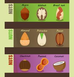 Healthy natural nuts horizontal banners vector