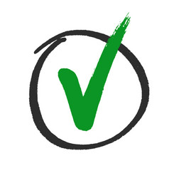 Vote or approved check mark hand drawn vector