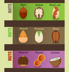 Healthy natural nuts horizontal banners vector