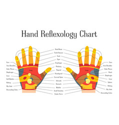 Cartoon reflexology hands alternative medicine vector