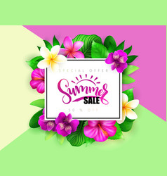 Summer sale banner with hand lettering and vector