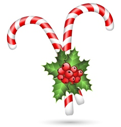 Two candy canes with holly on white vector image vector image