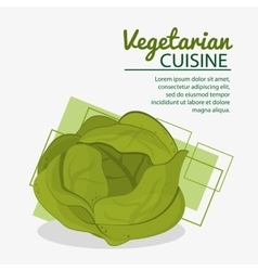 Lettuce fresh natural vegetarian cuisine vector