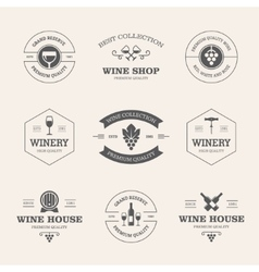 Wine badges and labels vector