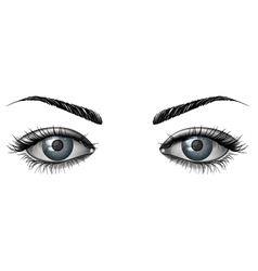 Photorealistic human female eyes close up vector