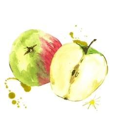 Watercolor apples summer hand drawn fruit vector