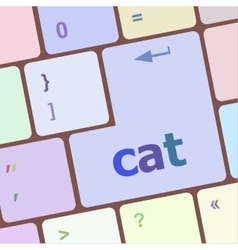 Cat word on computer pc keyboard key vector