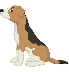 dog sitting isolated on white background vector image vector image