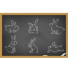 Rabbits sketch drew on blackboard vector