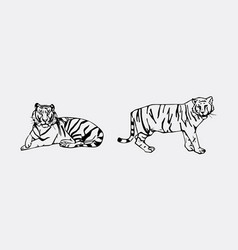 Tiger emblem set vector