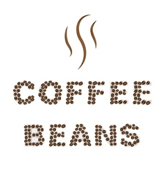 Coffee beans type on white area background vector