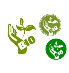 Bio concept with a hand holding leaves vector