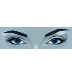 blue eyes vector image vector image