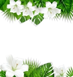 Frame branch tropical leaves and white flowers vector
