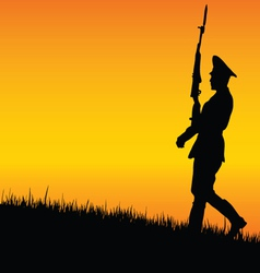 Soldier on guard in nature vector