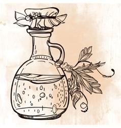 herbal medicine vector image