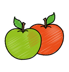 Apple fruits icon vector