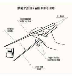 Hand position with chopsticks vector