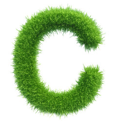 Capital letter c from grass on white vector