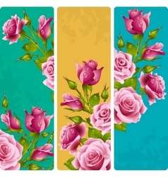Pink rose frames set vector