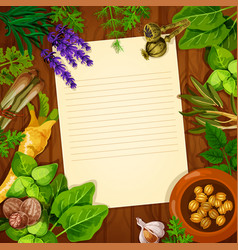recipe paper with spices and fresh herbs vector image