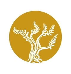 tree olive branch sketch icon yellow circle vector image