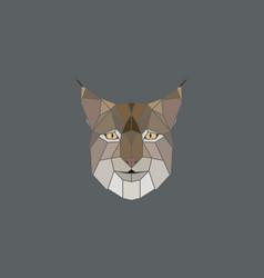 geometric head lynx vector image