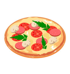 Tasty pizza with tomato mushrooms salami and vector
