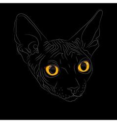 Cat breed sphinx vector
