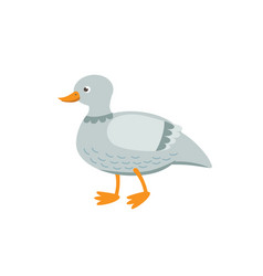 cute duck flat isolated on vector image