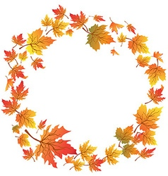 Maple leaves circle with copy space vector