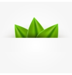 Green realistic leaf paper banner abstract vector image