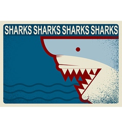 Shark poster background for design vector