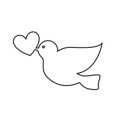 dove with heart icon vector image vector image