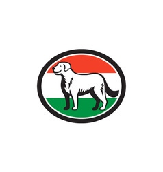 Kuvasz dog hungarian flag oval retro vector