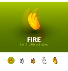 Fire icon in different style vector image