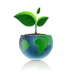 Flower pot in the form of the planet earth vector