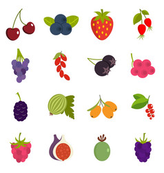 Berries icons set in flat style vector