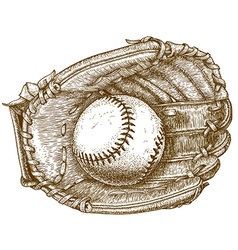 engraving baseball glove and ball vector image